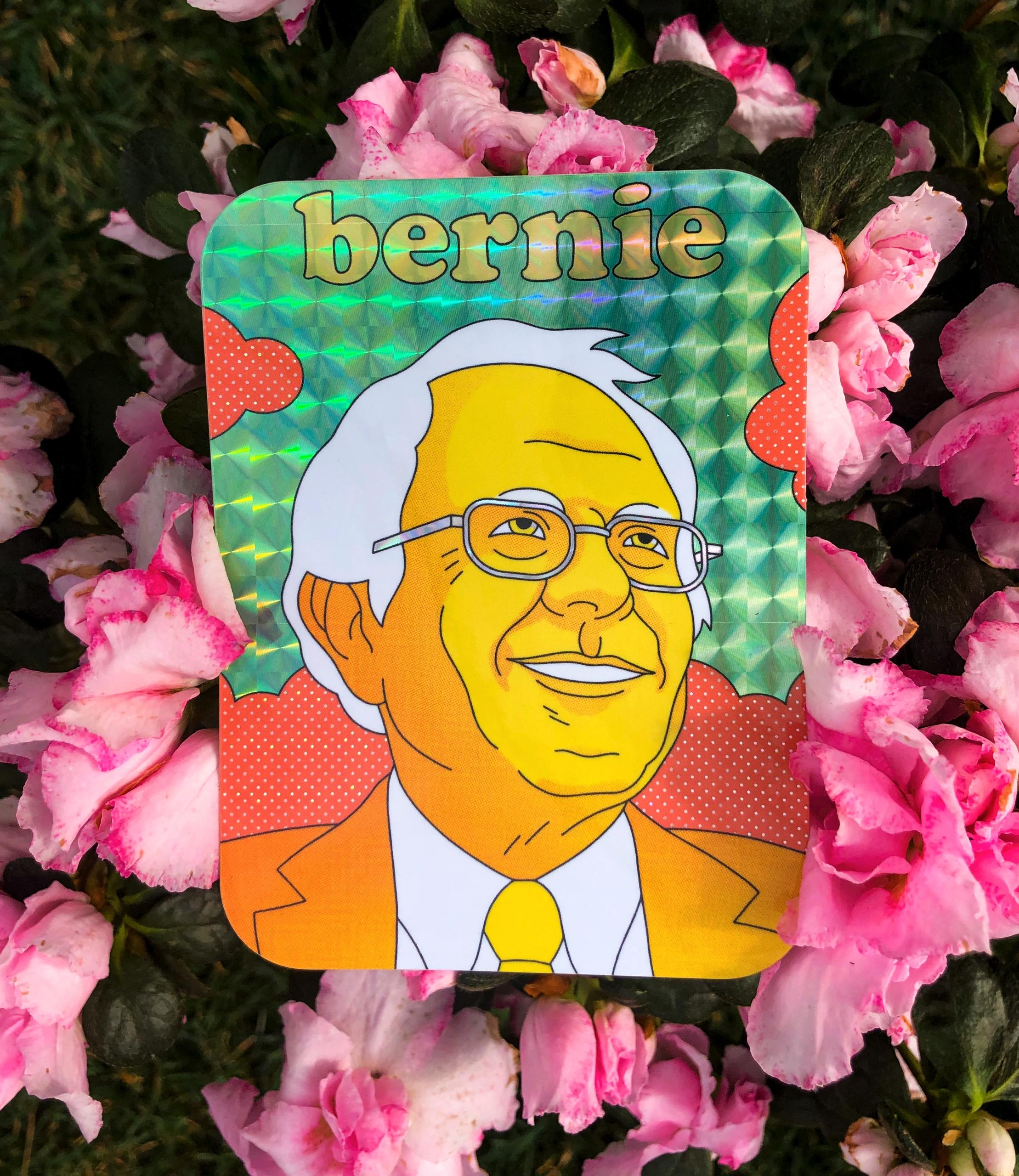 Show support Bernie Sanders rad - bryanwestart | ello