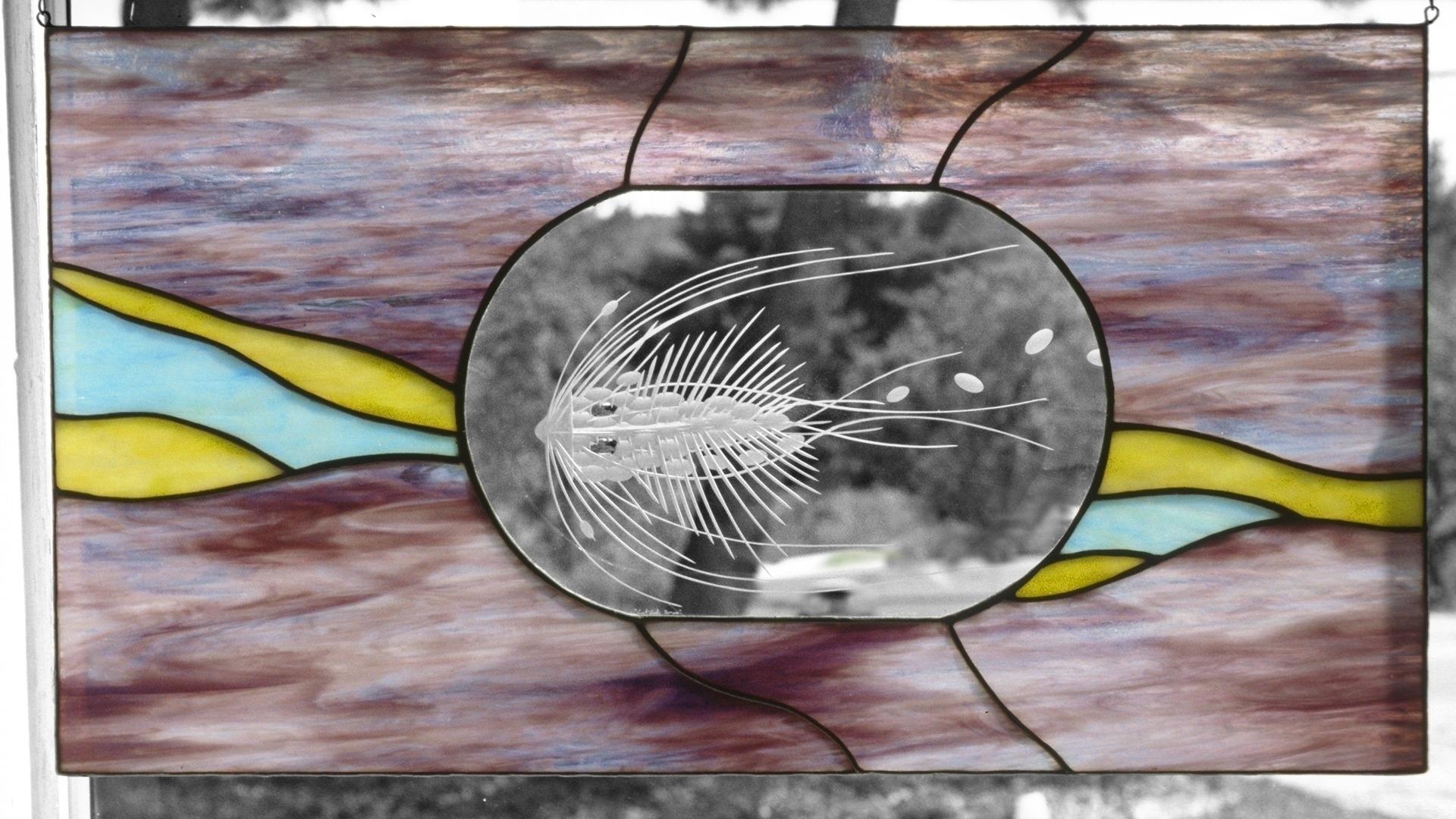 Catfish bones -eyes, brilliant  - thoskite | ello