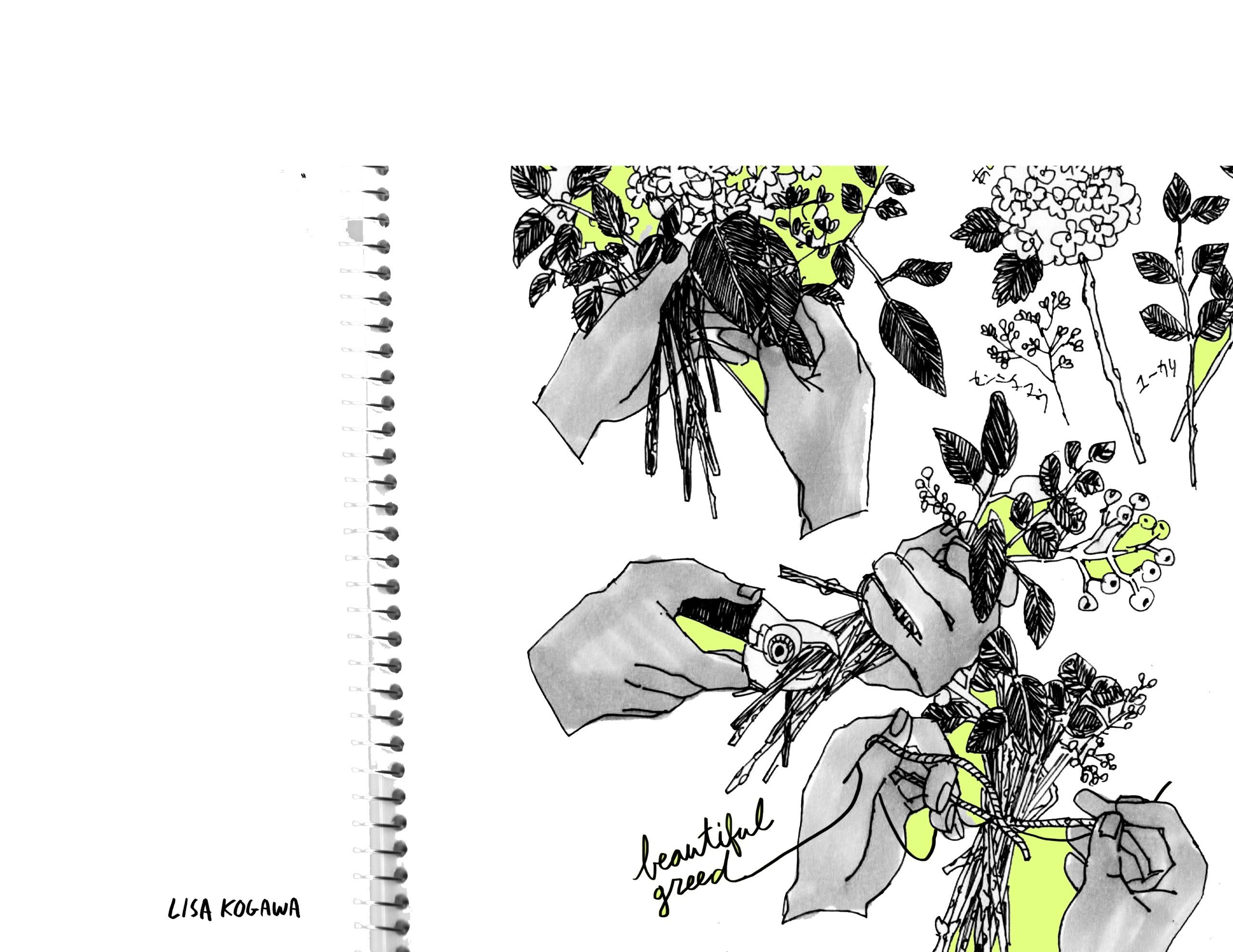 Plant Zine - lisakogawa | ello