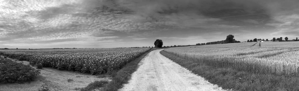 Land - land, photography, weath - ivop   ello