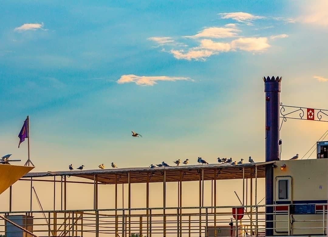 sunset, birds hanging top boat - p1nktree | ello