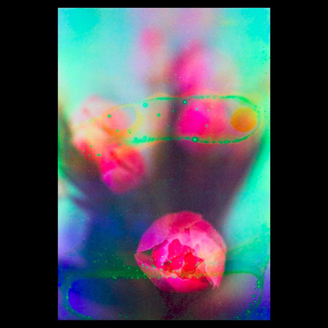 Tulips Oct, 2020. Fuji C200 (So - matthewschiavello | ello