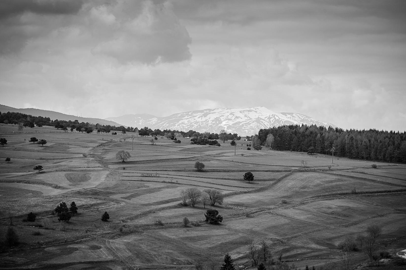 2019 - Err, France, spring, blackandwhite - yannkerveno | ello