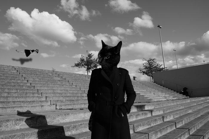 Berlin Series – Deadly Sins: In - juliamurakami | ello