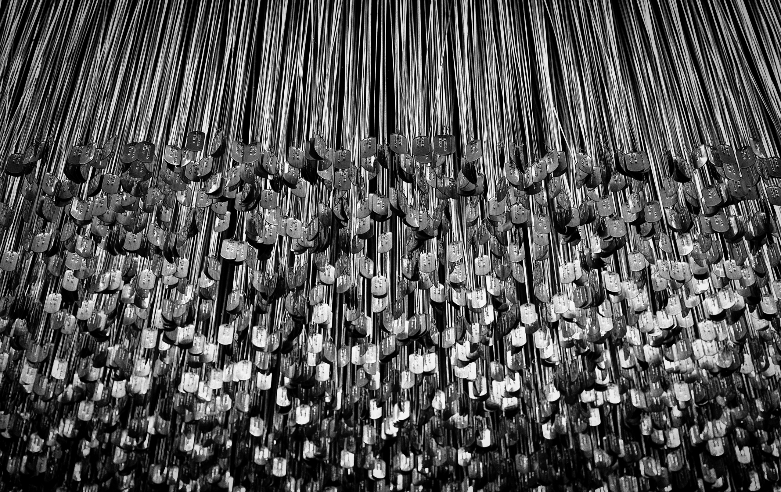 58,000 dog tags, representing p - junwin | ello