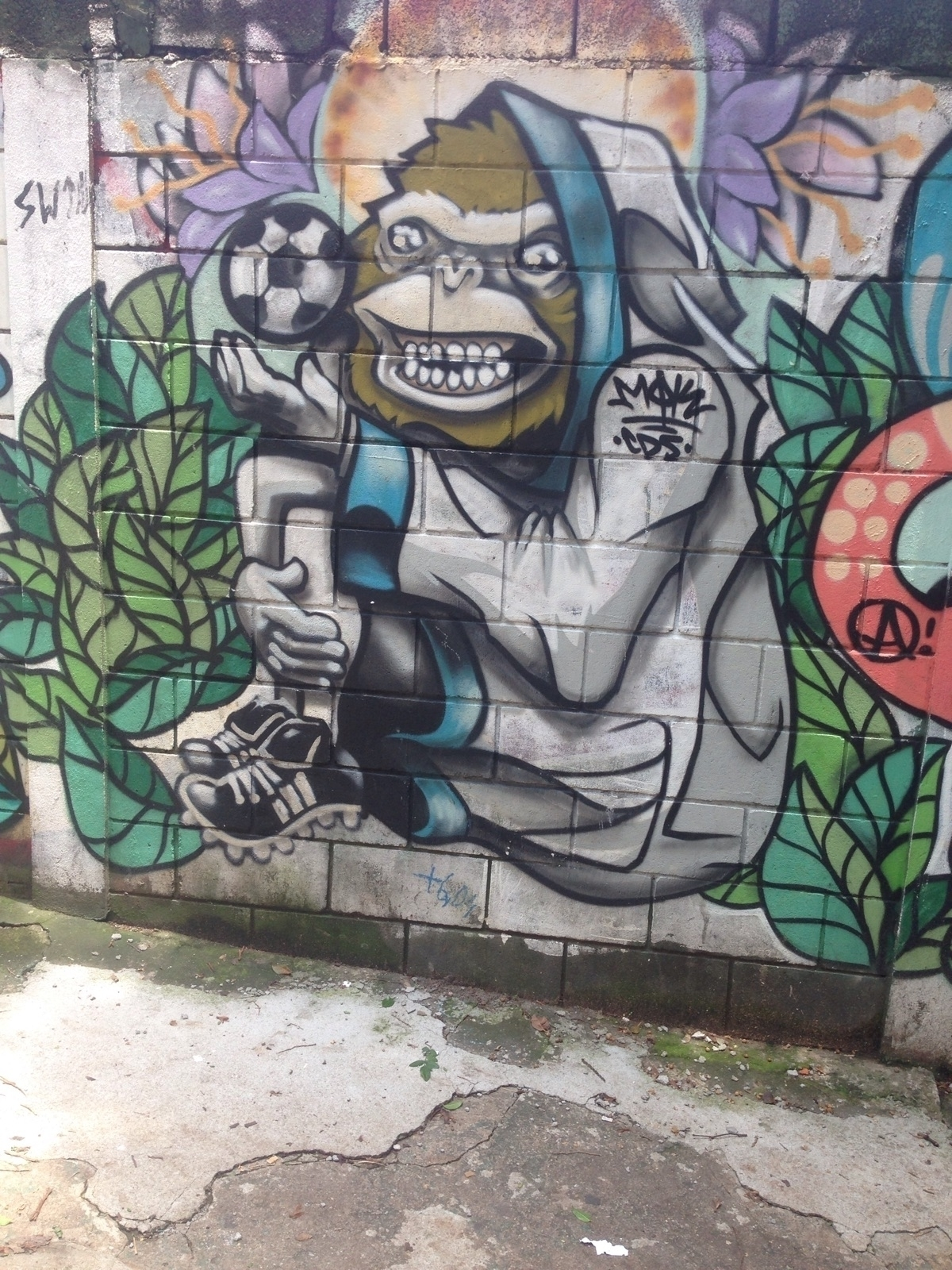 Pinheiros, São Paulo, Brasil - casparmenke | ello