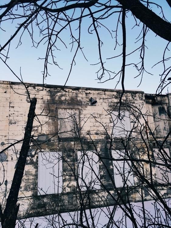photography, winter, building - jkalamarz   ello