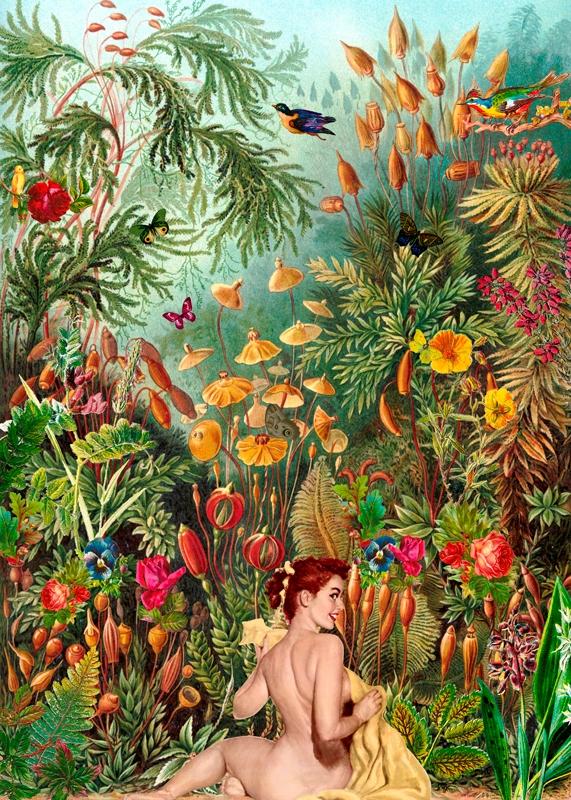 day Paradise... Eva (Collage 20 - gloriasanchez | ello