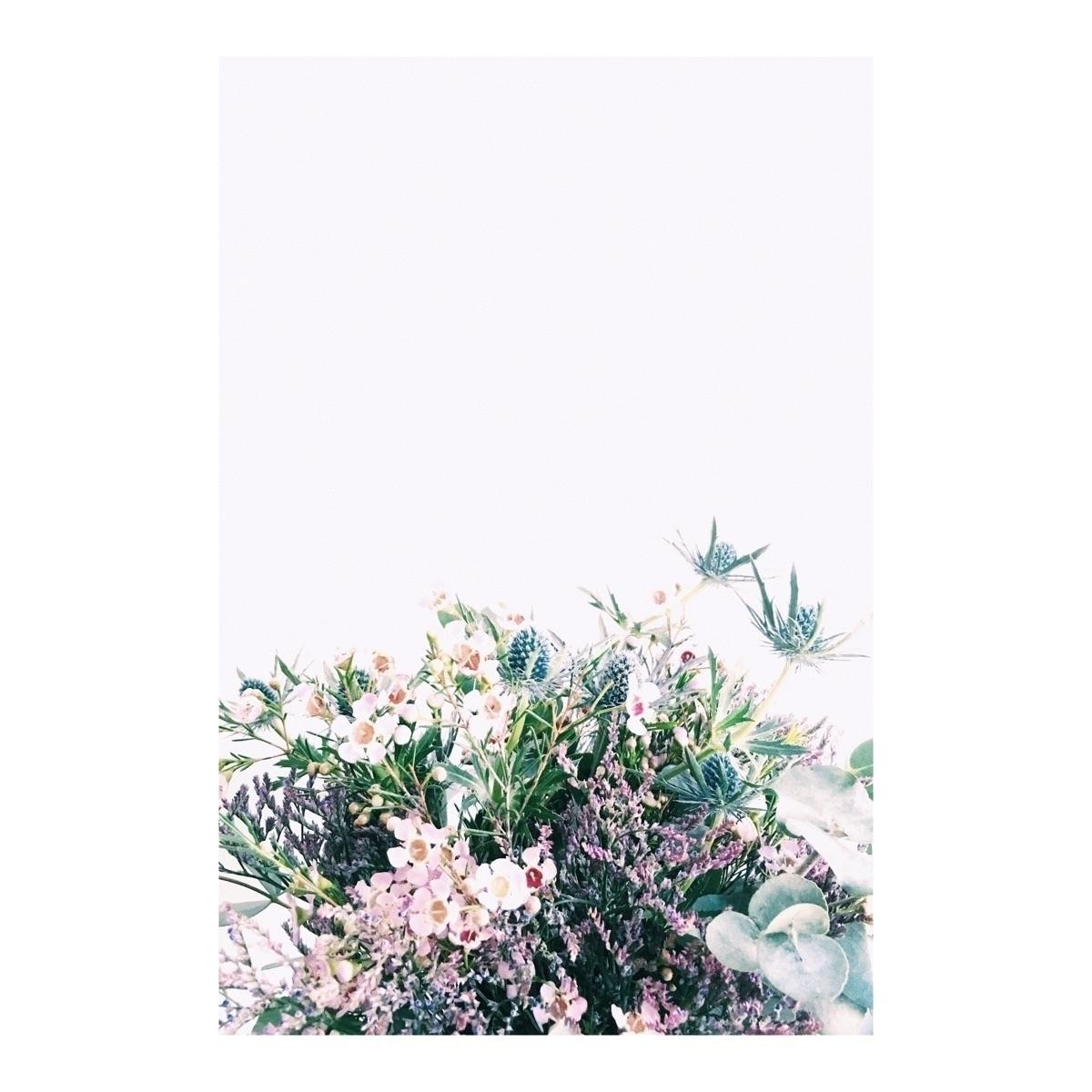Spring | - flowers, happy, spring - rikkewestesen | ello