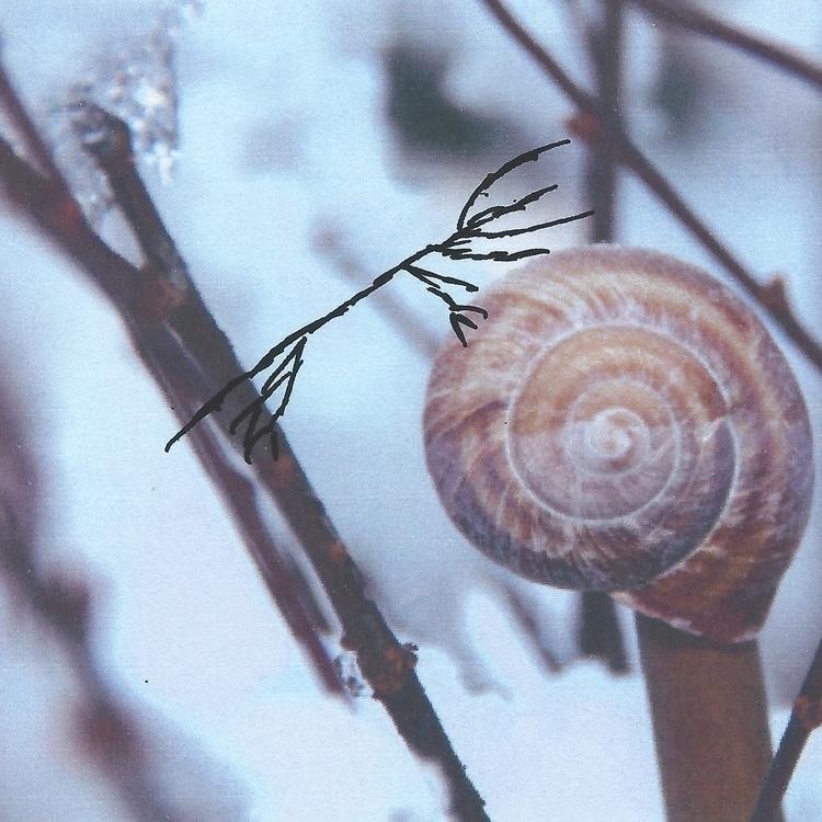 """Met snail today,"" Hydra. asked - littlefears | ello"