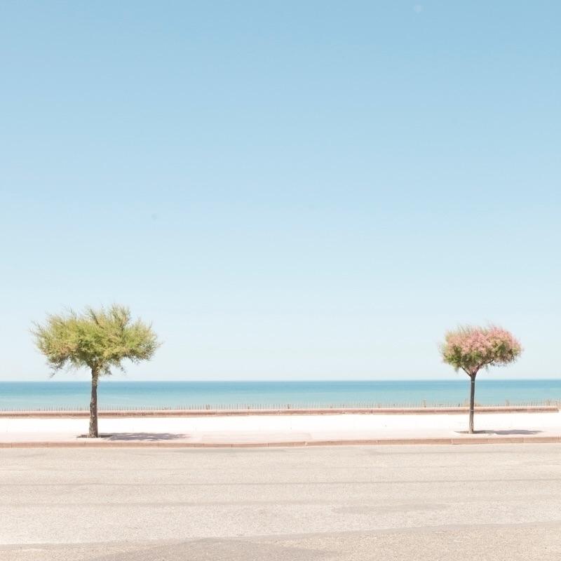 landscape - matthieuvenot | ello