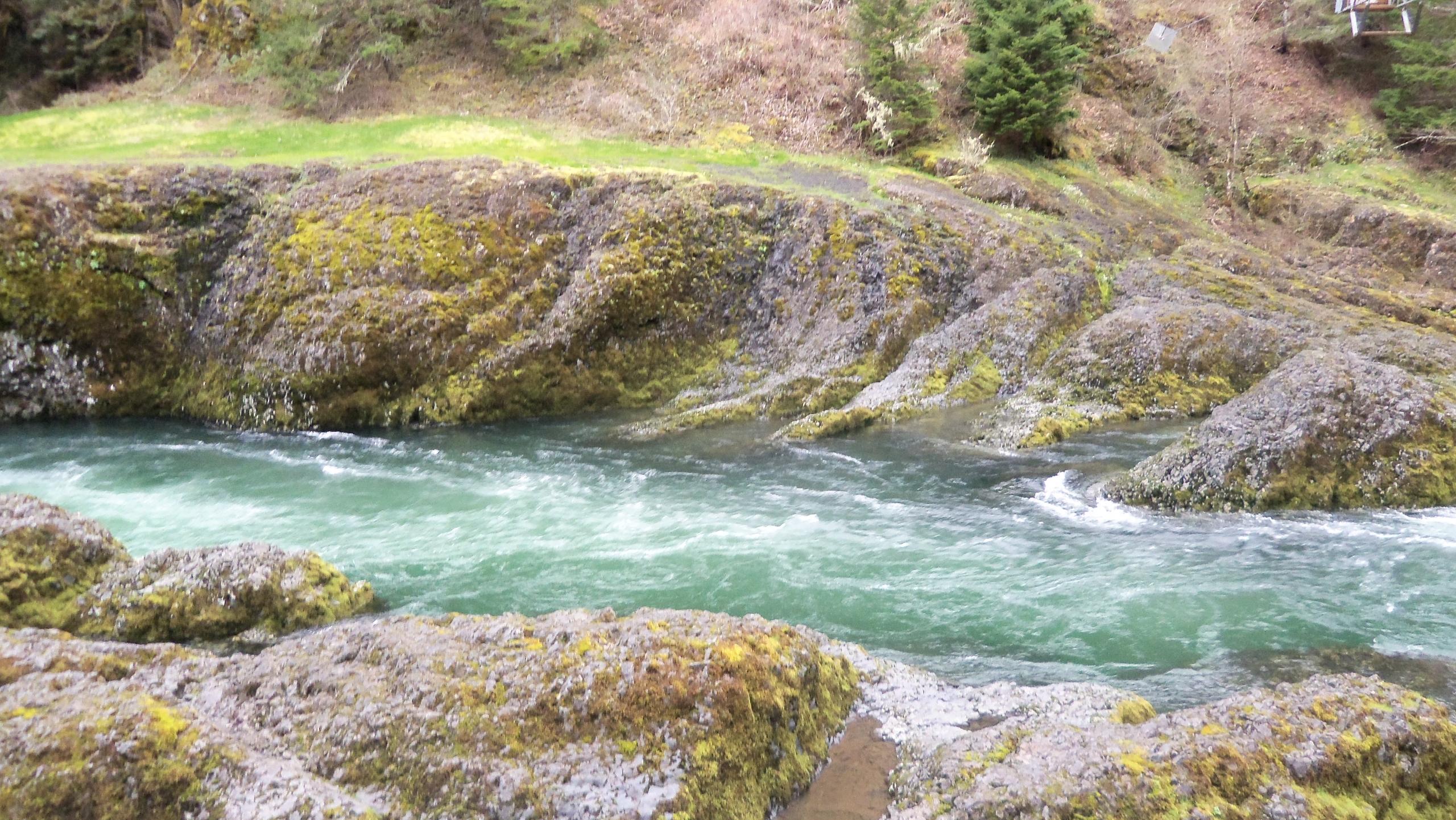 narrow section Clackamas River  - mrkz1000 | ello