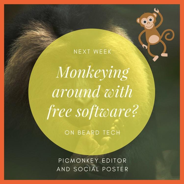 art show - monkeys, circles, typography - beardtechman | ello