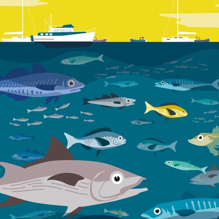 Fishes mediterranean sea - illustration - martin_carrese | ello