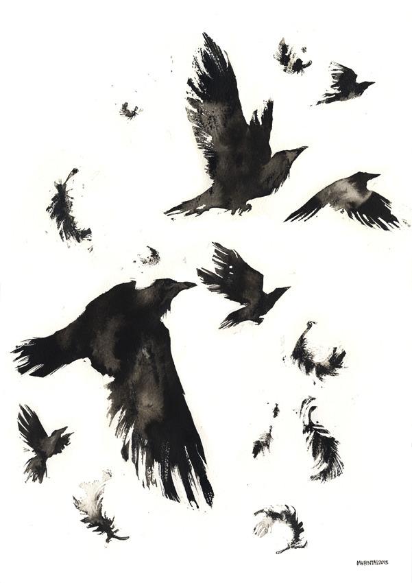 Murder - illustration, ink, raven - myrntai | ello