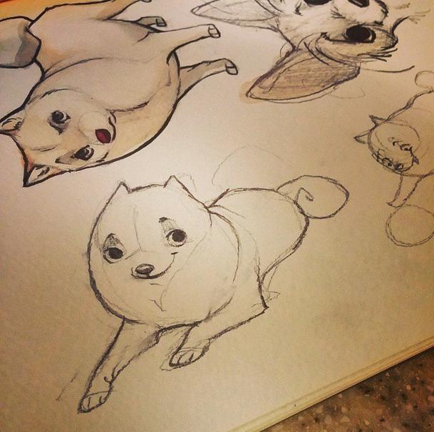 Kiba Sketch - shibainu, shibainu - barkpointstudio | ello