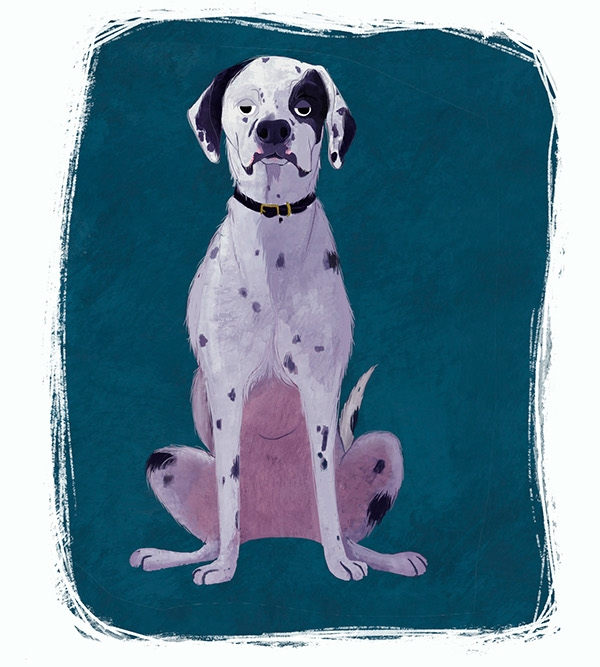 Elvis - dog, cute, illustration - ashleyodell | ello