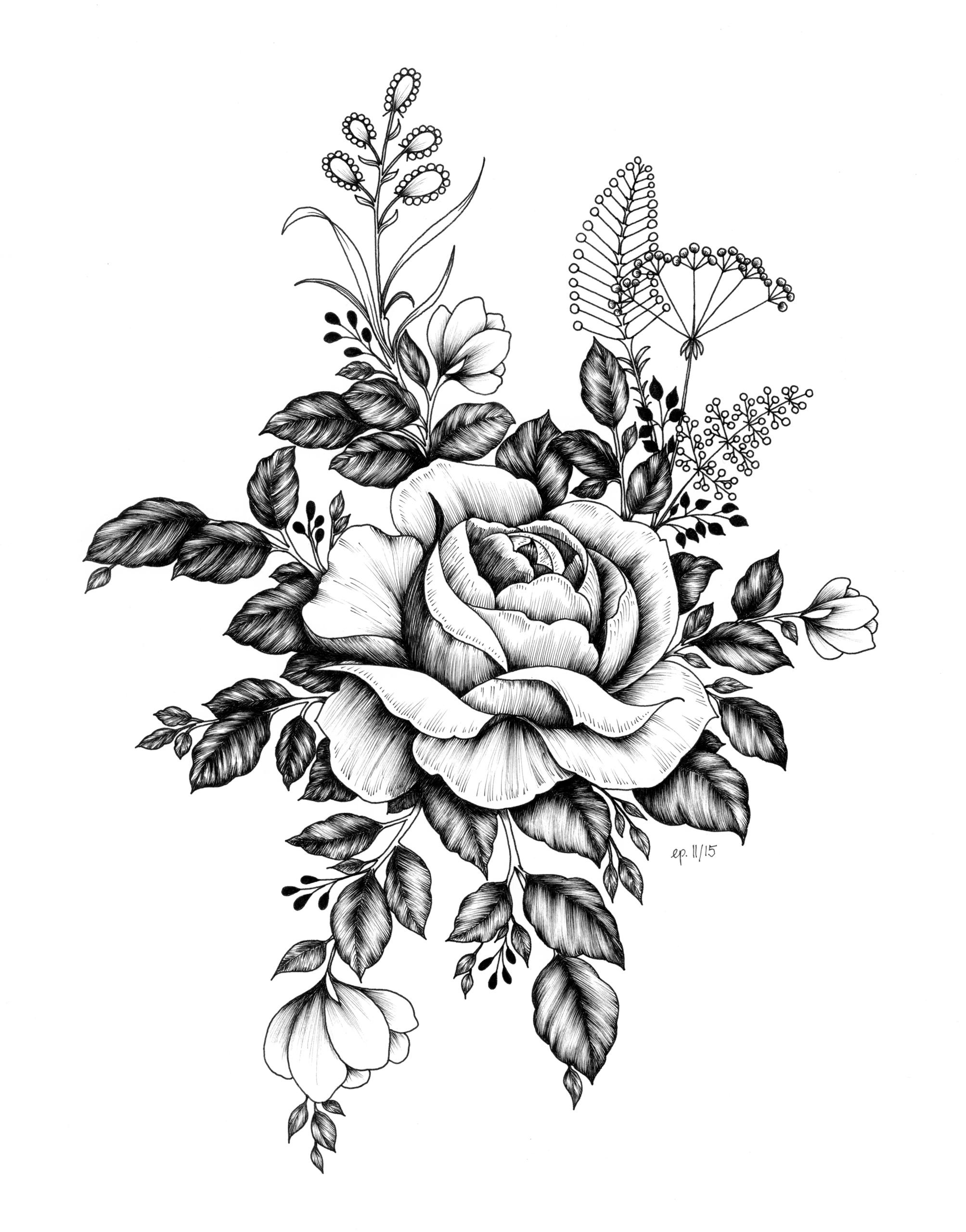 Rose - illustration, rose, flowers - ellenparzer | ello