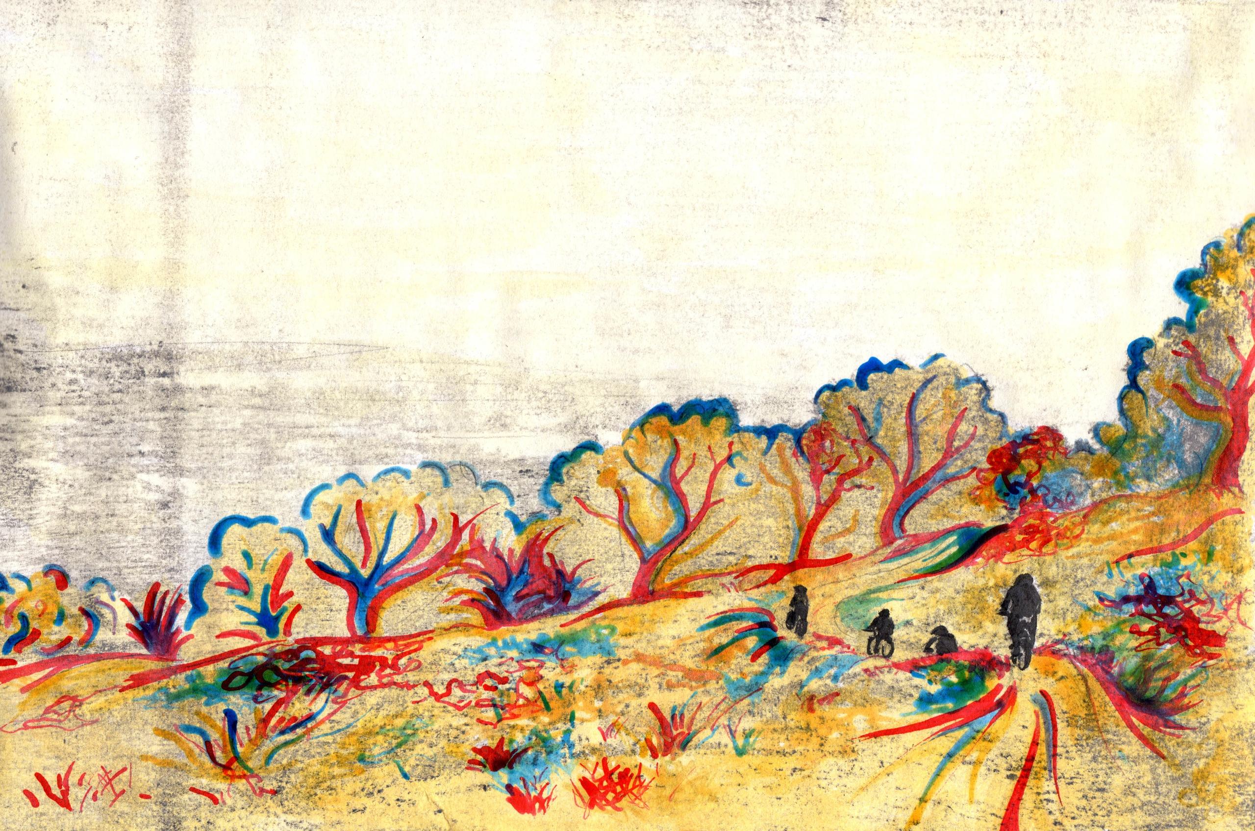 Freewheeling - illustration, nature - cooterillustration   ello