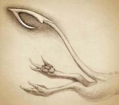 Barbed tail - original illustra - rocky-1221 | ello