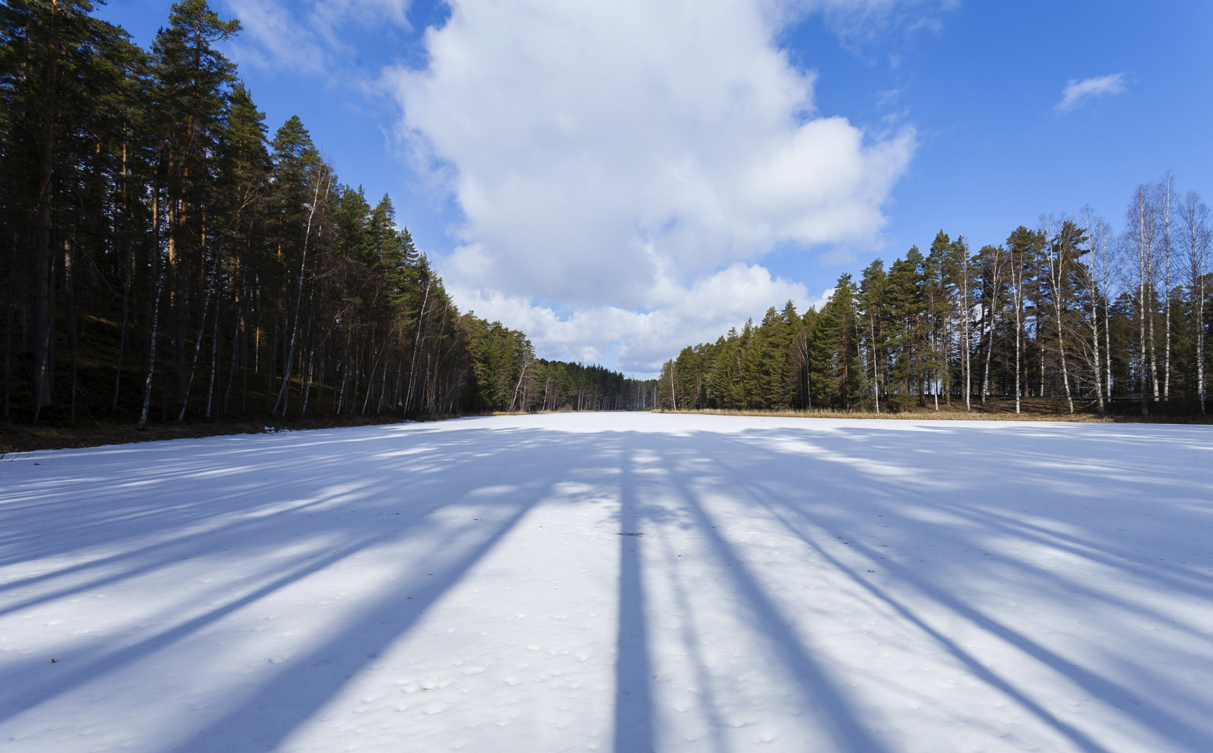 small lake - photography, finland - anttitassberg | ello