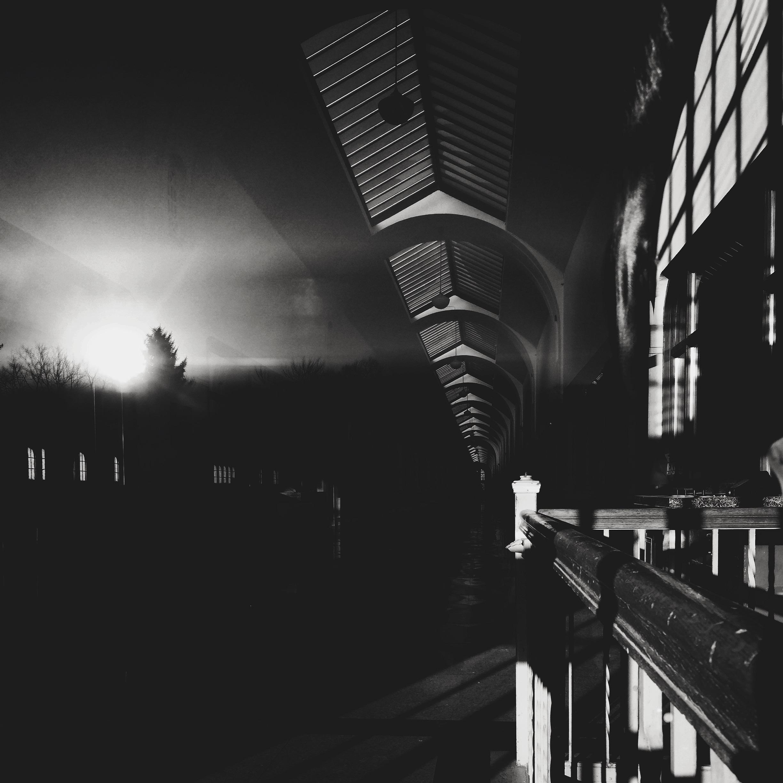 Nightmare (Toronto 2016 - dainahodgson | ello