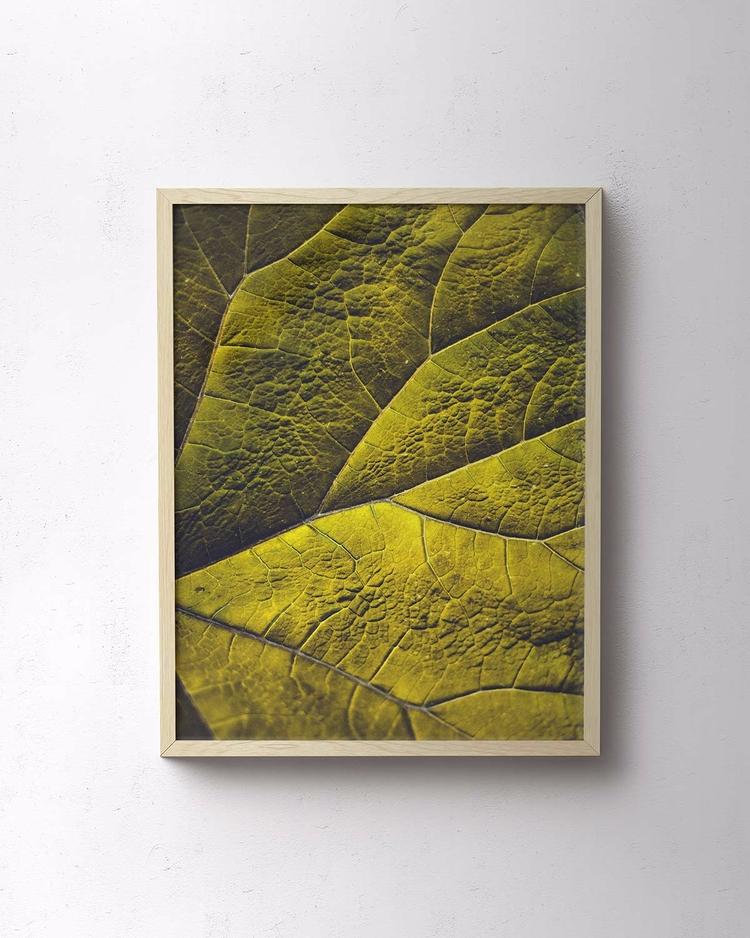 Folium - Limited Edition Print - palegrain | ello