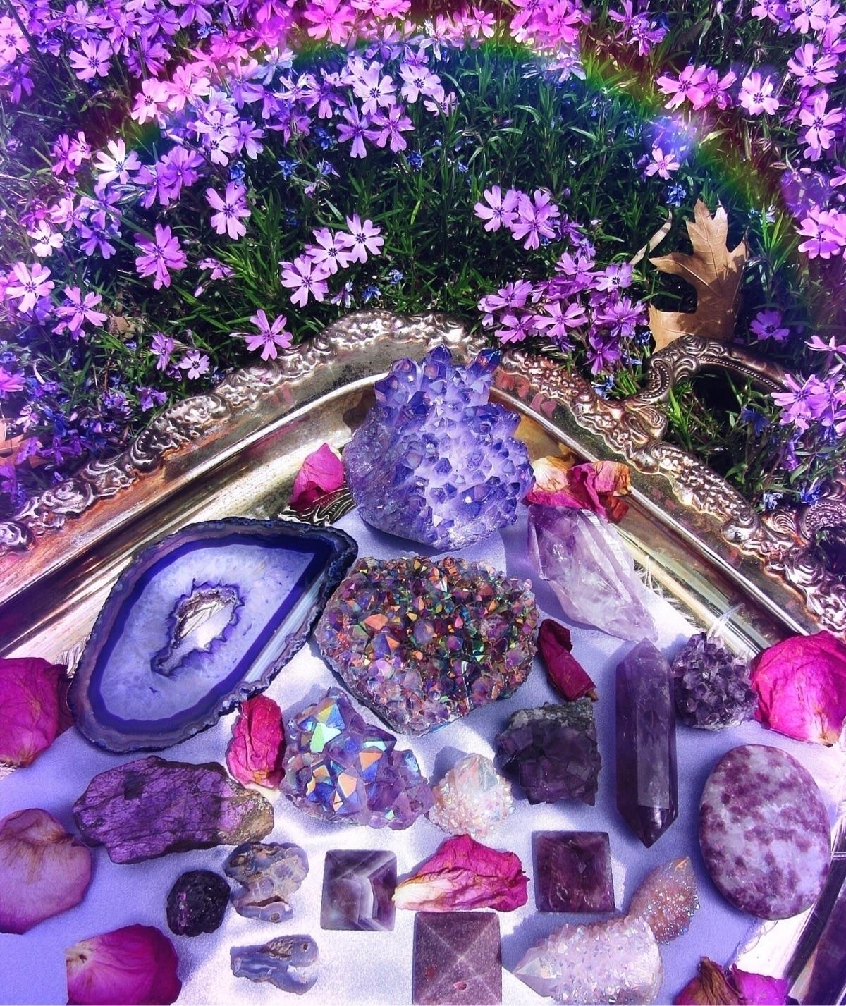 Purple Prince manifested crysta - amarisland | ello