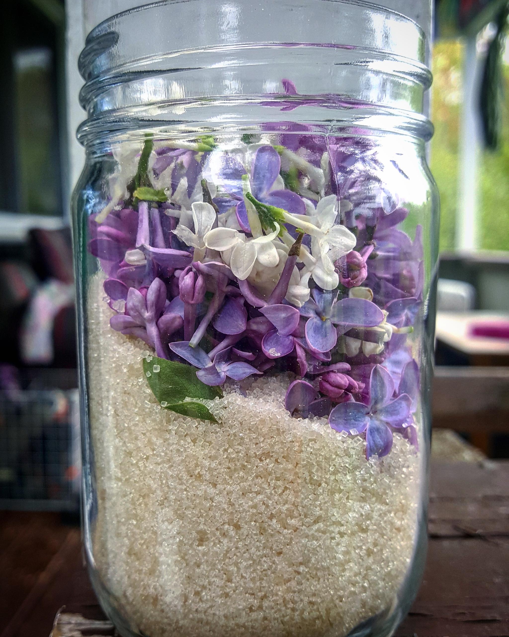 preserve lilac scent making LIL - vitalherbals | ello