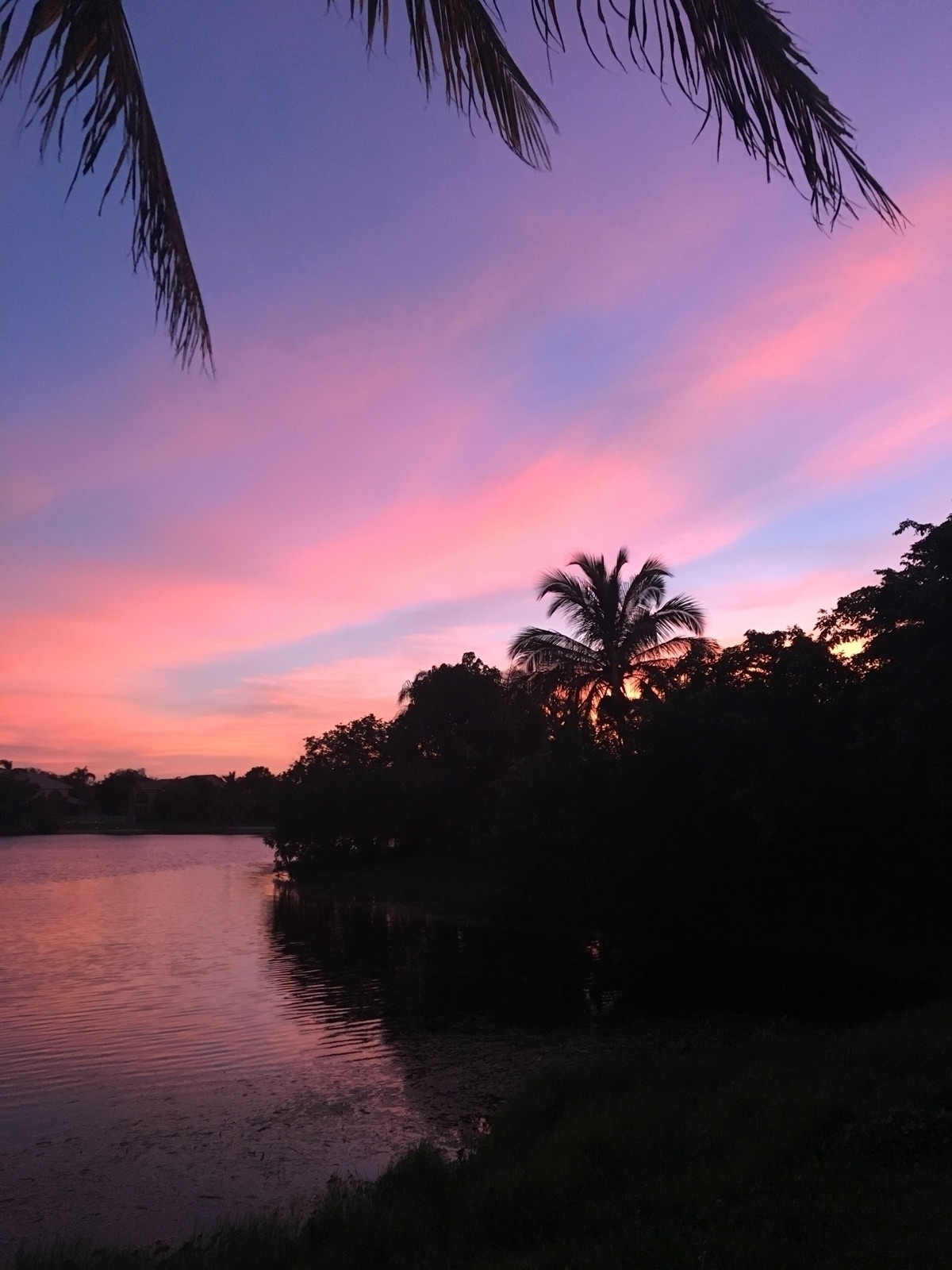 Sunset FL - game30 | ello