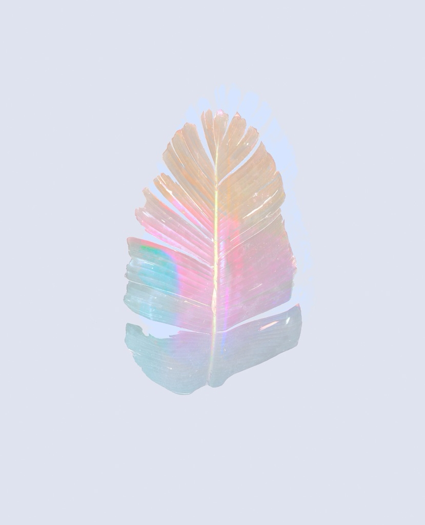 Exotic Minimalism - nature, color - eugenie_s | ello