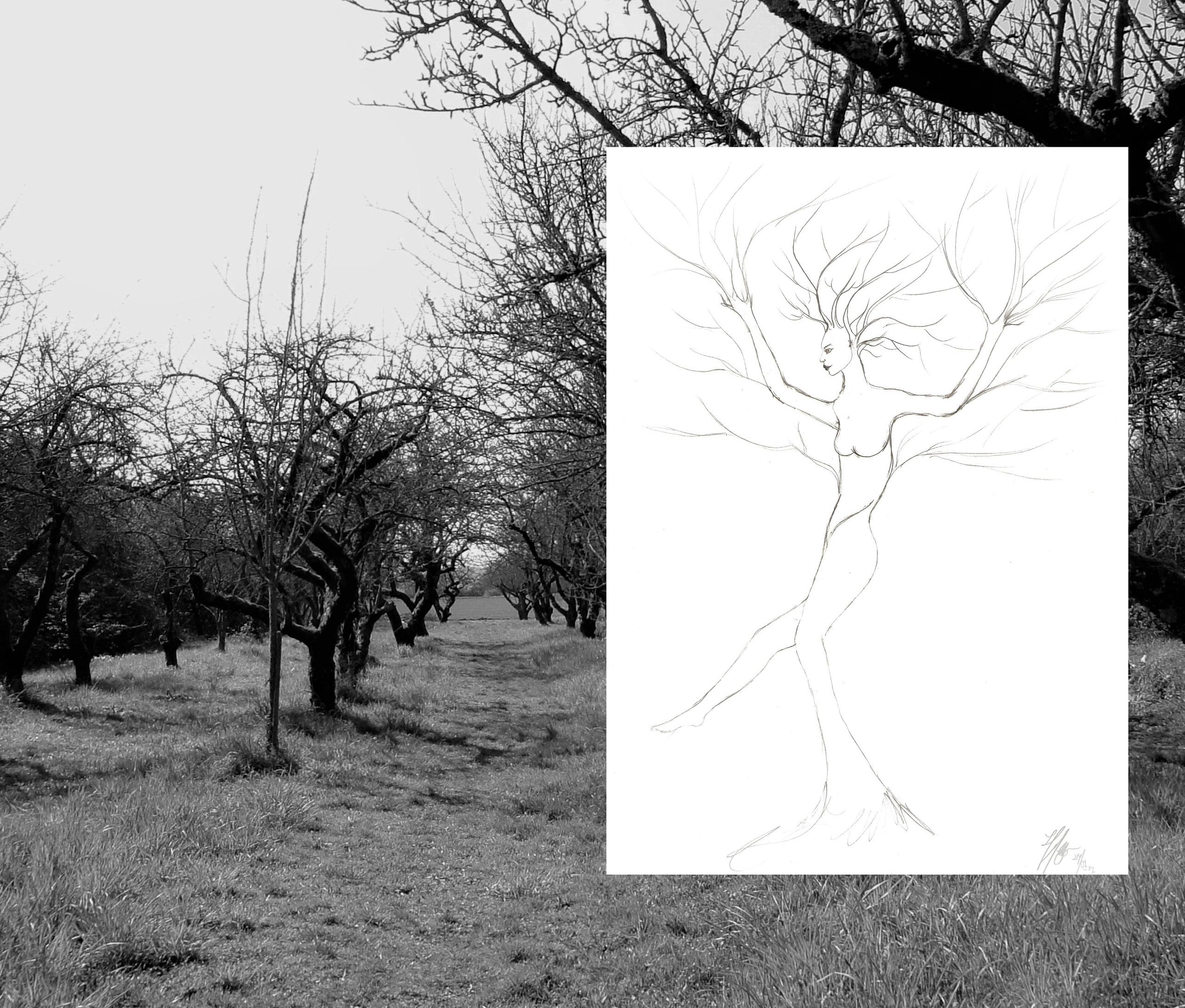 Flow. find inspiration nature o - haleh_creates | ello