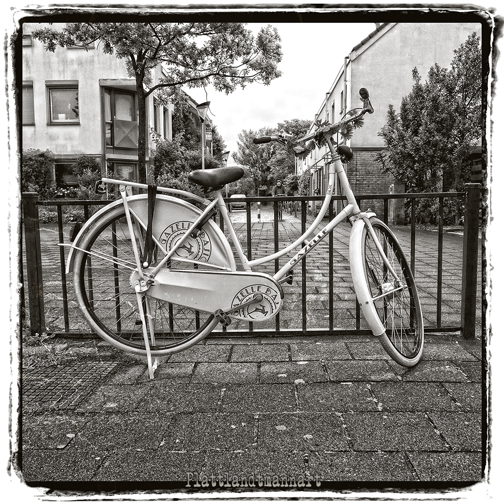 Dutch bike - plattlandtmann | ello