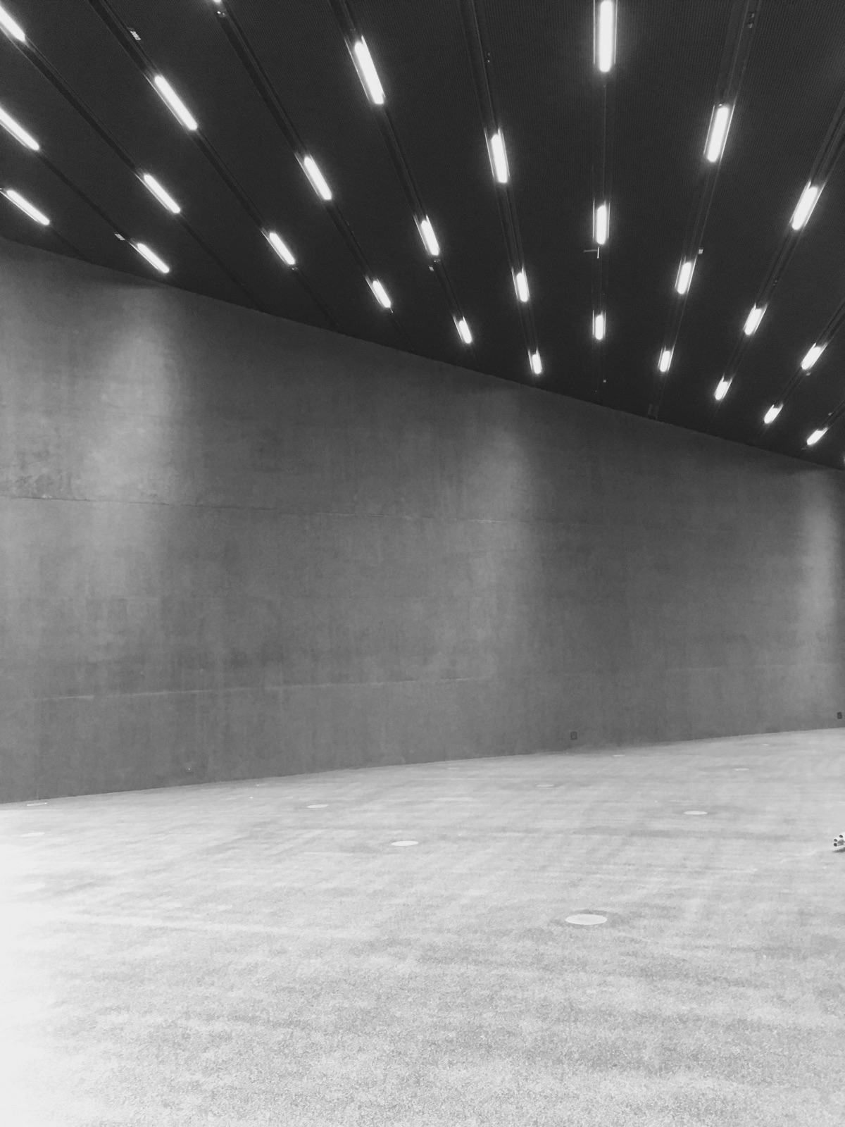 Futurium Berlin  - preview, pitch - gregosphere | ello