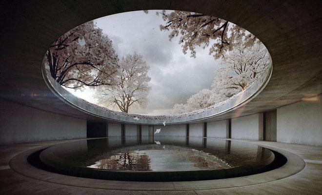 Oval Tadao Ando Naoshima Contem - sophiegunnol | ello