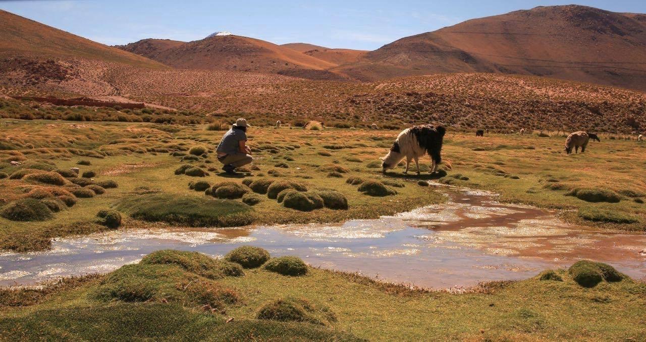 Chile-Bolivia Documentary Colle - robertorenault   ello