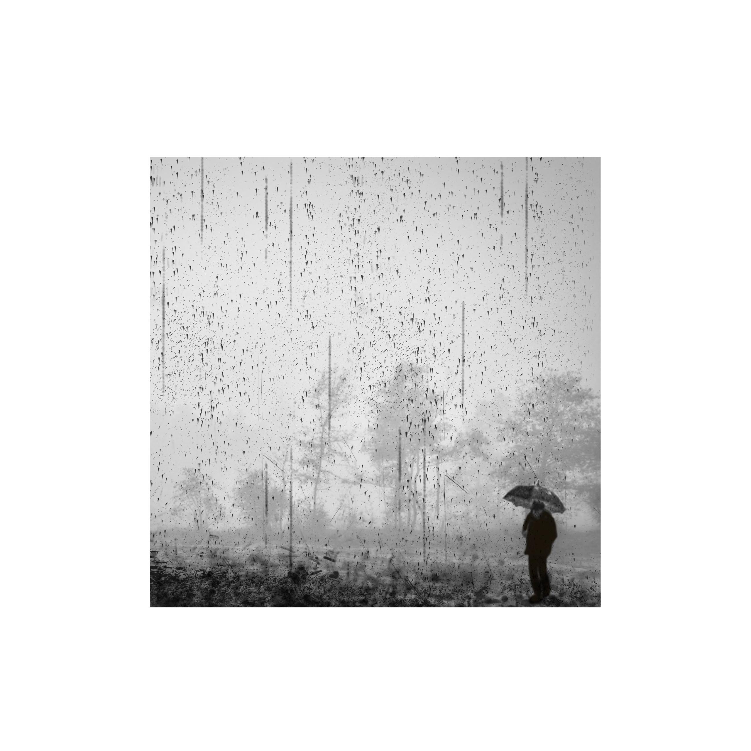 Rain, rain, rain - monique2211 | ello