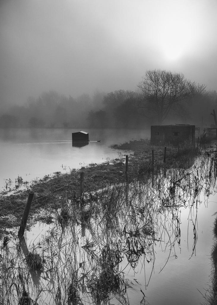 Somerton flood - misty, foggy, flooded - toni_ertl   ello