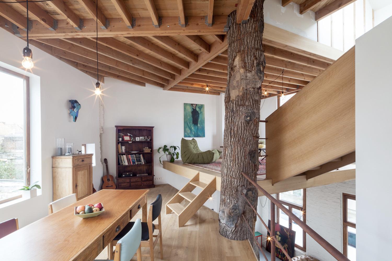 Kartasan House / Atelier Vens V - red_wolf | ello