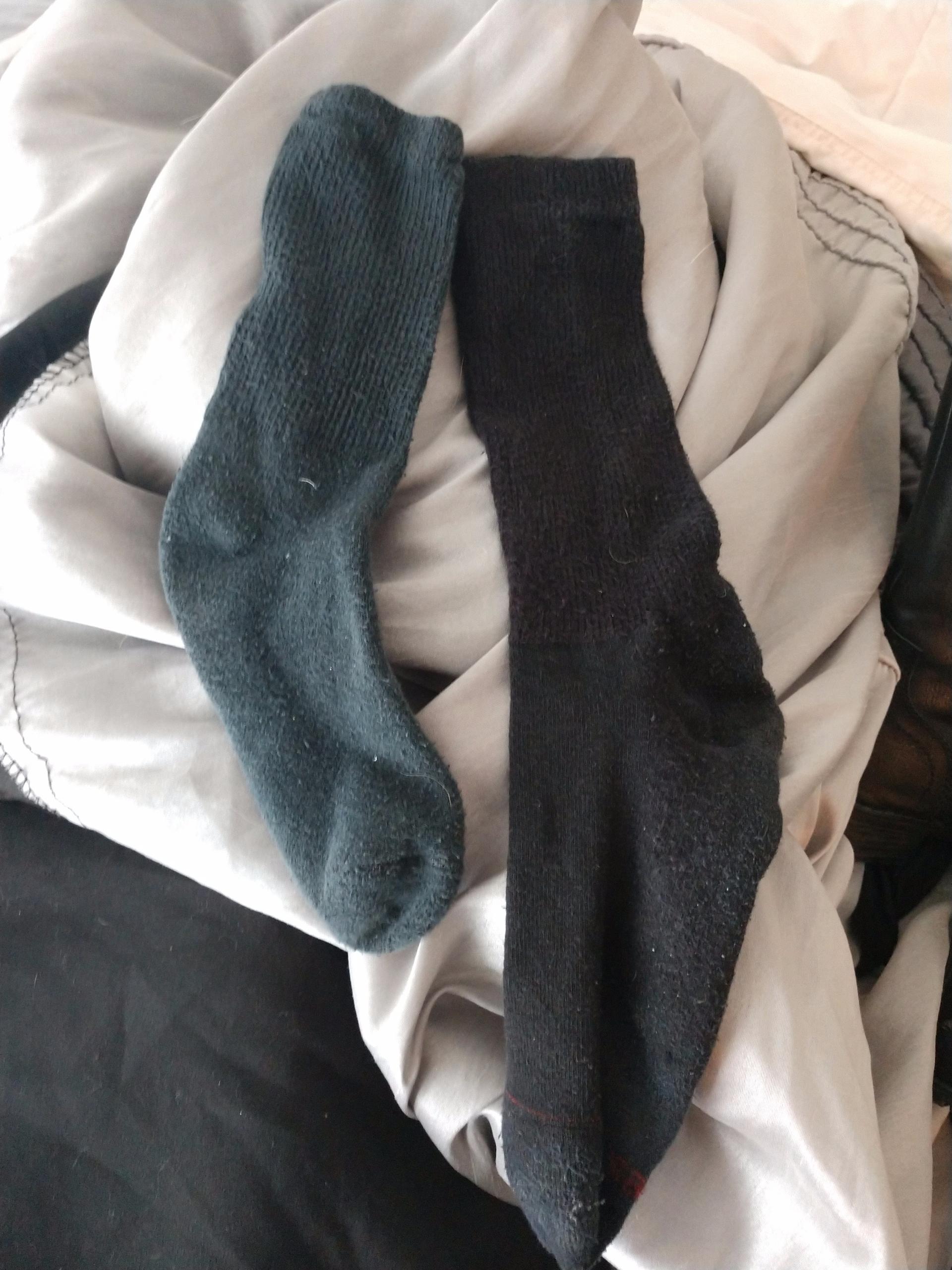 morning ready pulled black sock - selenwolfwtites | ello