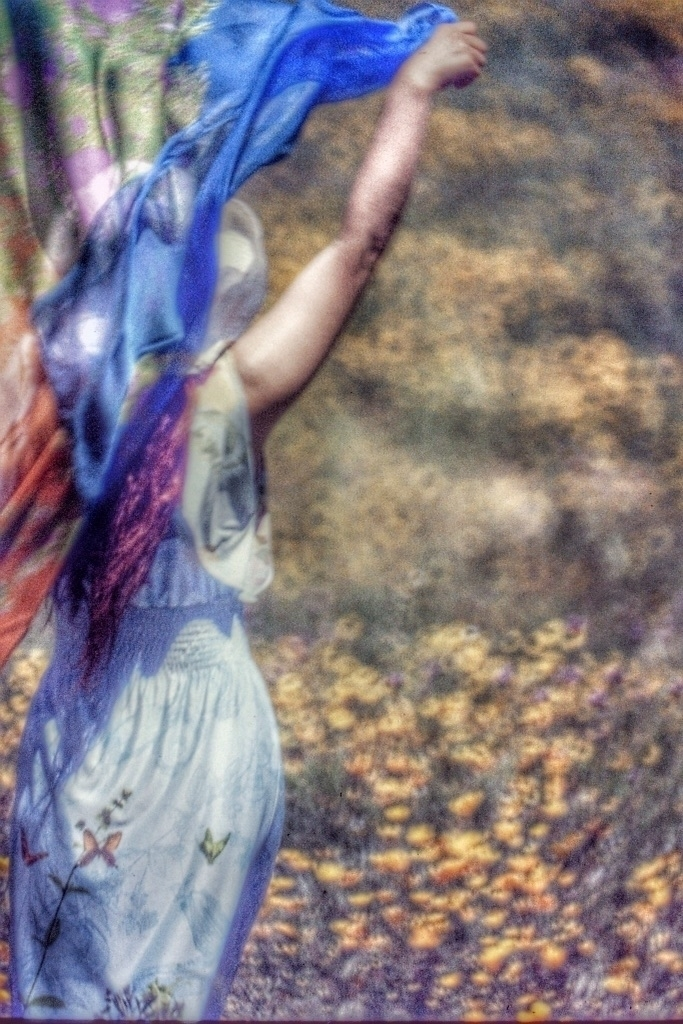 super bloom phoenix 500mm f8 mi - d_nodave | ello