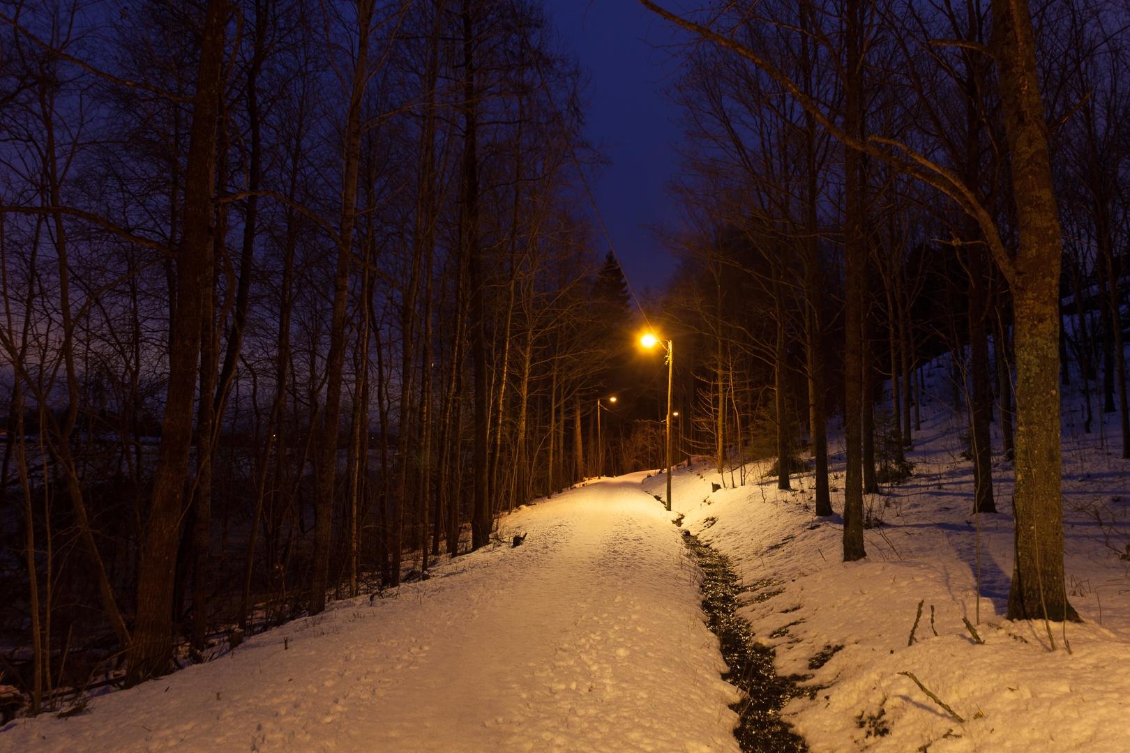 Path night - photography, finland - anttitassberg | ello