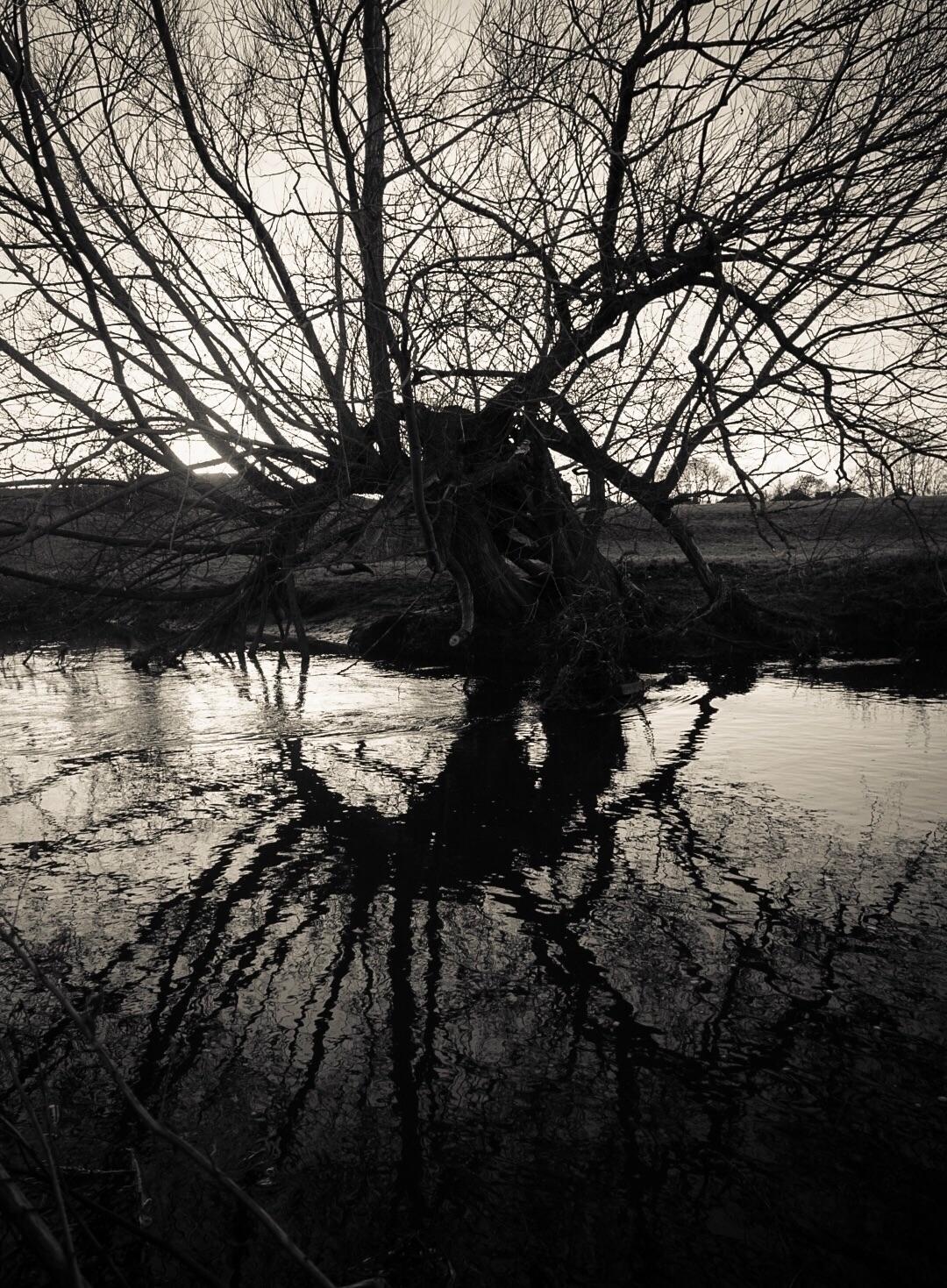 Rorschach river. 7th Jan 2018 - greyswan | ello
