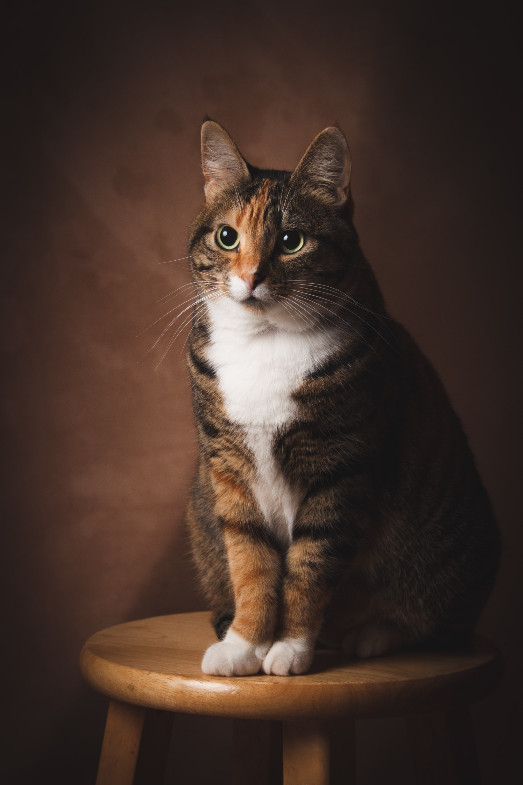 Senior Photo Class '89 - carlamills | ello