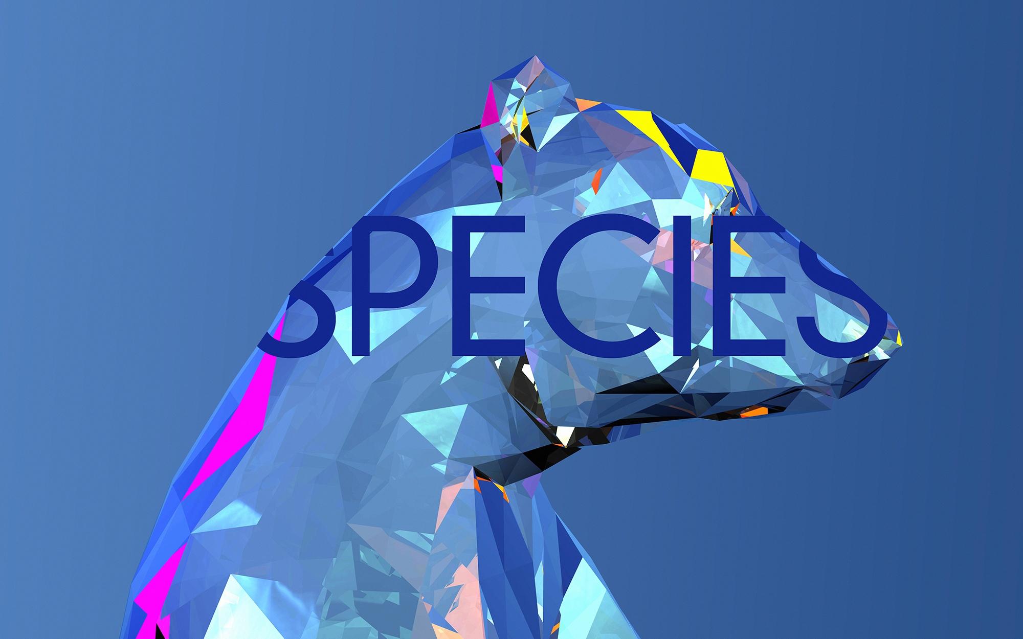SPECIES NastPlas - nastplas, illustration - nastplas | ello