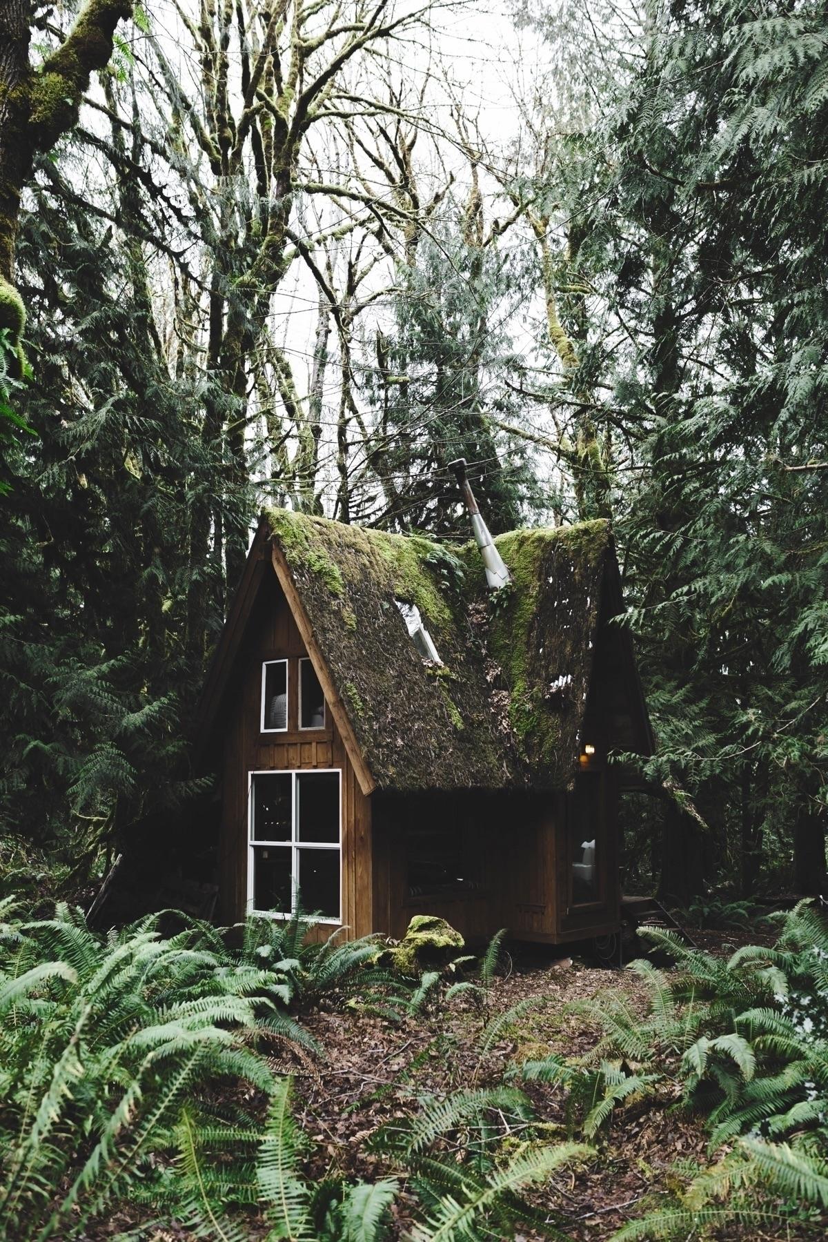 Cabin vibes - basiciggy | ello