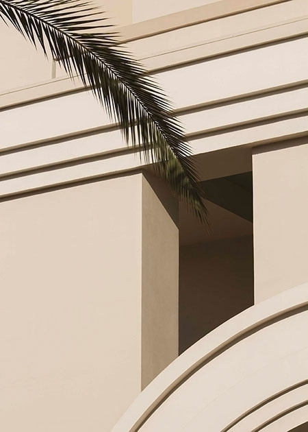 Palm - graphic, minimal, photography - francois_aubret | ello