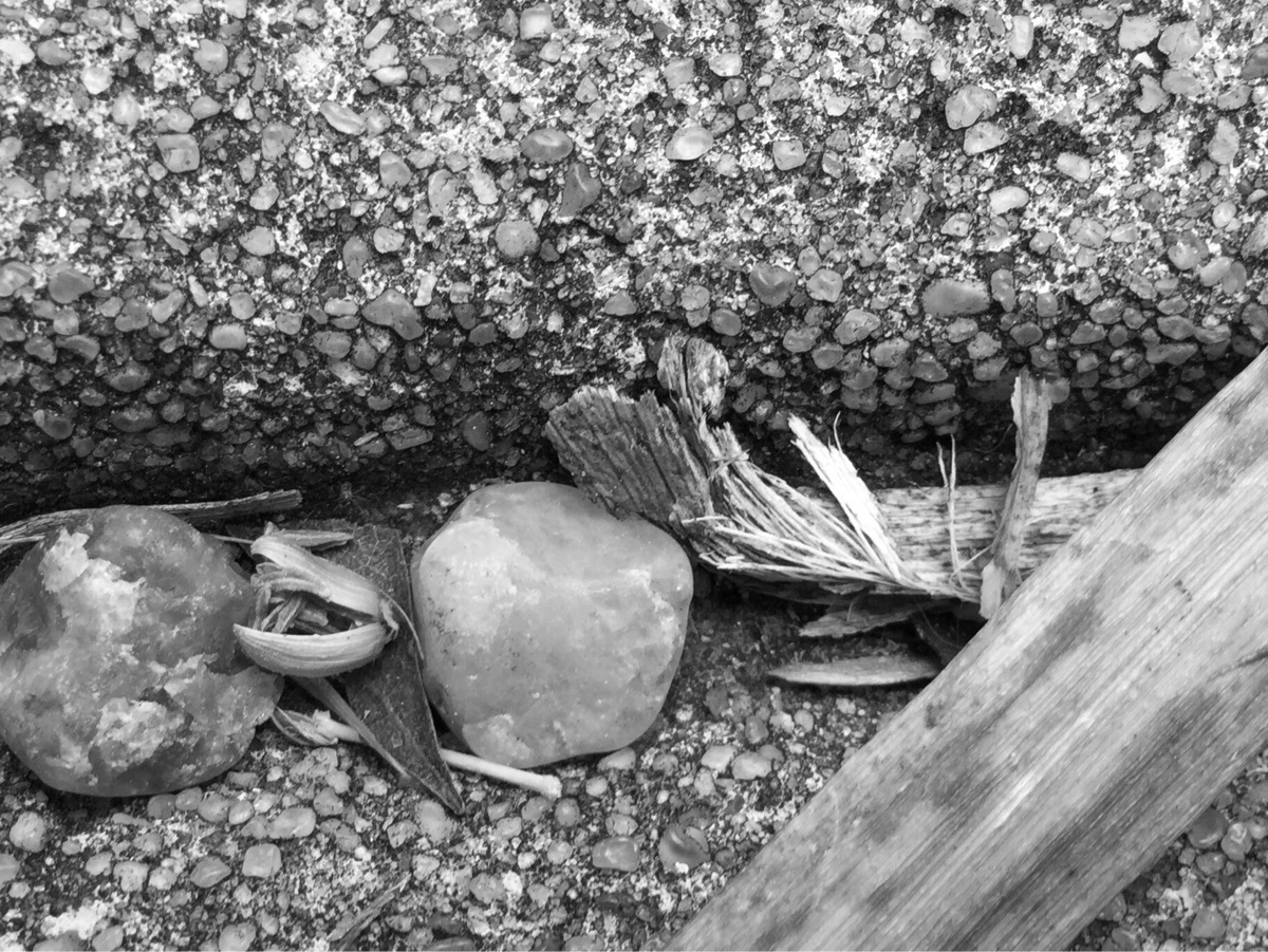 Stones Branches Left Crack - mikefl99 - mikefl99   ello