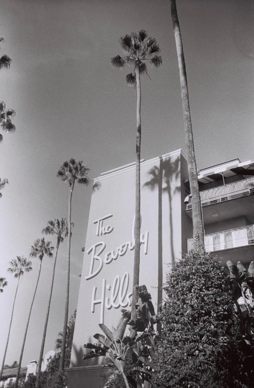 Beverly Hills Hotel . Shot Dior - missanderson | ello