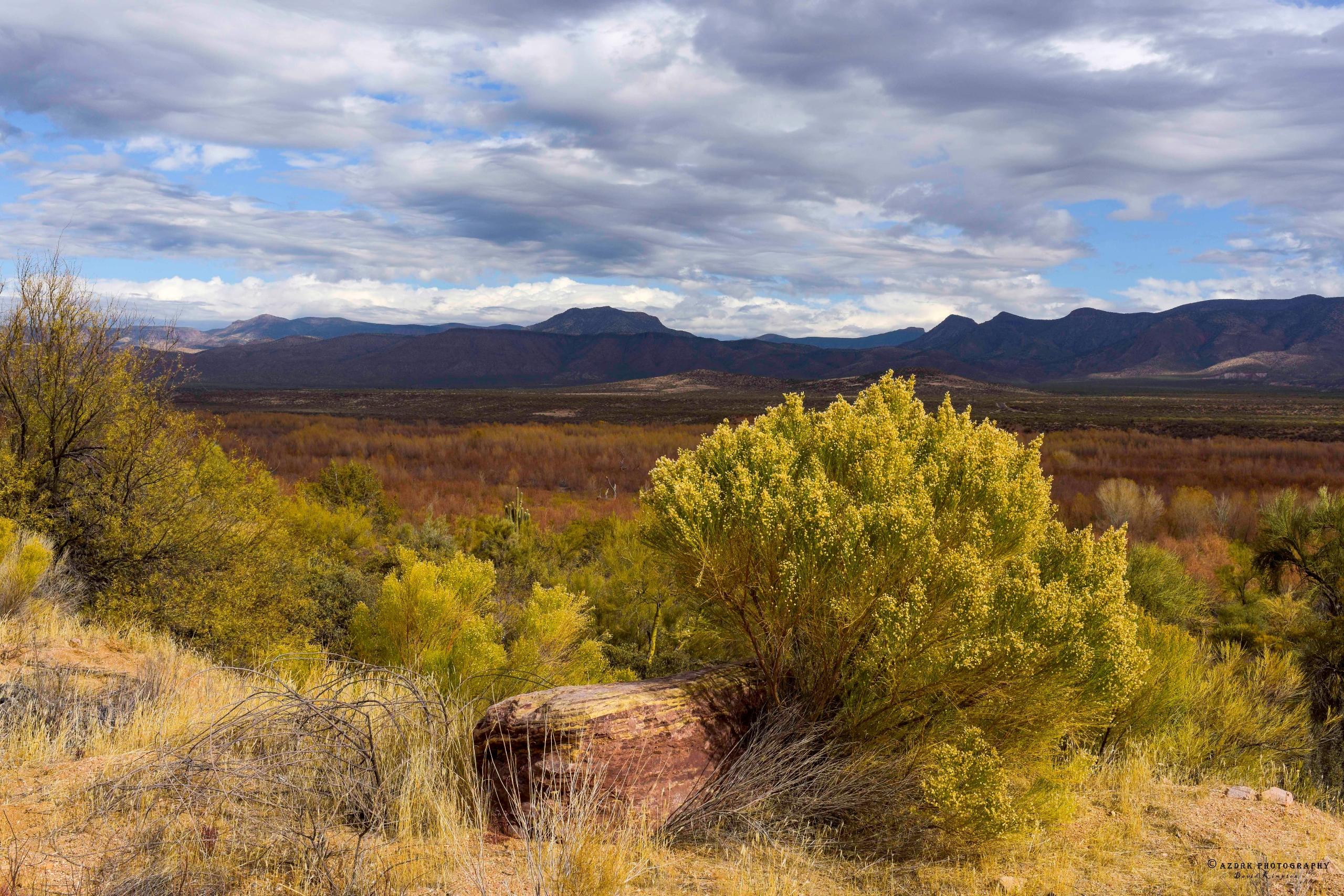 Southern Arizona, 2018 view des - azdrk   ello